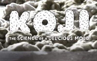 Koji: The Science of a Delicious Mold